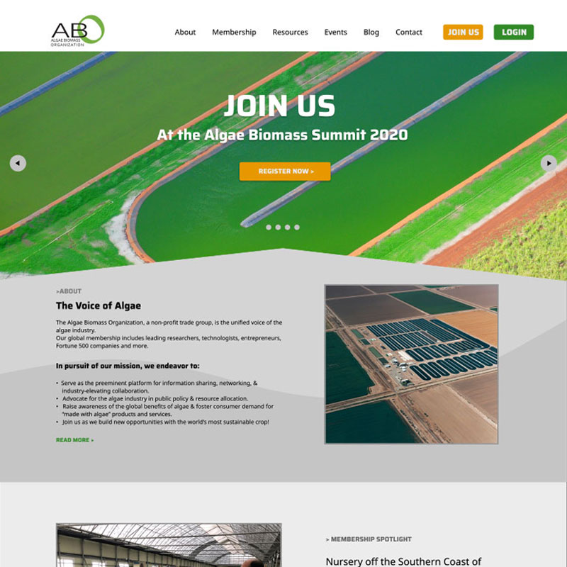 Image of Website Design by Mike Dreiling